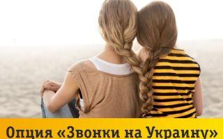 Билайн: звонки на Украину из России, услуги, стоимость, тарифы