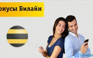 Бонусы Билайн — как проверить, использовать и потратить денежные рубли или баллы, акции, премиум статус