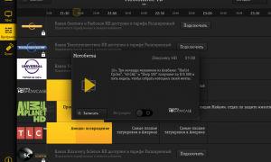 BeeTV Beeline: на компьютере, в мобильном телефоне, как скачать, подключить, отключить приложение