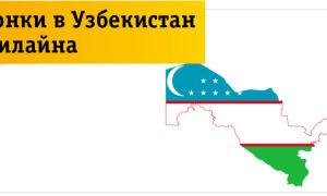 Beeline Uzbekistan (Билайн Узбекистан): тарифы, опции, как подключить, как оплатить